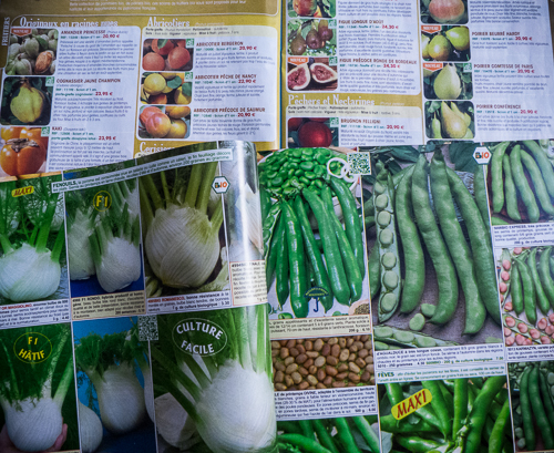 seed catalogues