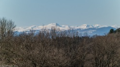 snow covered sancy