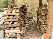 wood stacked for next winter